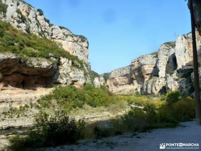 Selva Irati-Pirineo Navarro-Puente del Pilar; ruta puerto de canencia grupo pequeño senderismo madr